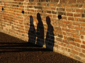 893012_shadows_on_the_wall